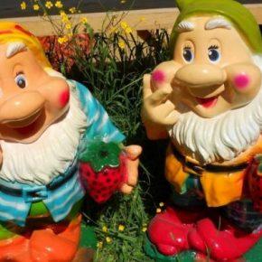 Декоративные гномы на участке – купить или сделать украшение своими руками? Установка и подсветка фигурок при оформлении сада (180 фото)