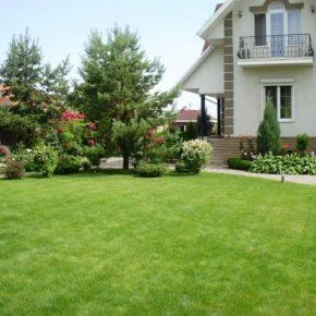 Озеленение двора: идеи и варианты ландшафтного дизайна и обустройства для участков различных размеров (175 фото)