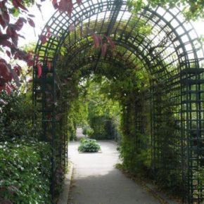 Садовая арка своими руками – идеи, схемы, чертежи, советы и рекомендации как сделать красивую и долговечную арку (видео + 120 фото)