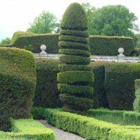 Садовый топиарий