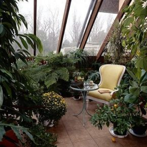 Как сделать зимний сад: лучшие проекты, схемы и идеи оформления своими руками. 155 фото вариантов подбора растений