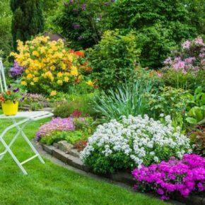 Декоративные клумбы своими руками: 165 фото красивых идей оформления и правила украшения сада и придомового участка