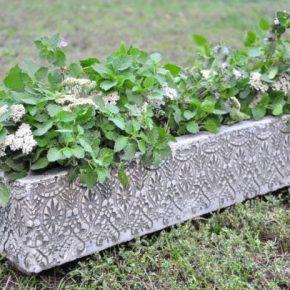 Как сделать кашпо для сада: оригинальные и креативные идеи посадки декоративных растений (125 фото)