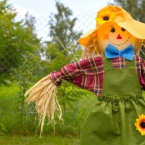 Как сделать пугало для огорода: 165 фото простых и красивых идей как сделать своими руками чучело