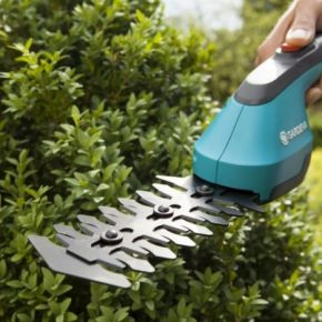 Как выбрать кусторез для дачи: виды садового инструмента и советы по выбору лучших кусторезов (115 фото)