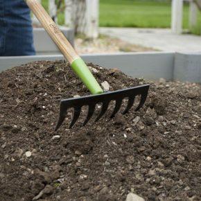 Как выбрать садовые грабли: советы по выбору инструмента для повседневной работы (105 фото)