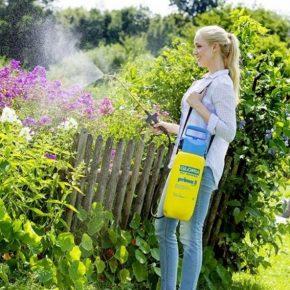 Как выбрать садовый опрыскиватель: обзор видов для дачи и огорода. Лучшие опрыскиватели 2018 года (135 фото)