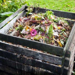 Компостная яма своими руками: 135 фото вариантов изготовления для сада и дачного участка