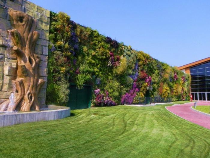 Озеленение участка своими руками: 110 фото простых и оригинальных решений озеленения участка