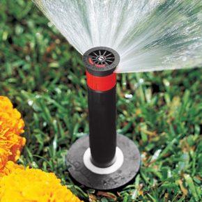 Варианты полива участка – современные методы автоматического полива и советы по созданию системы полива своими руками (130 фото)
