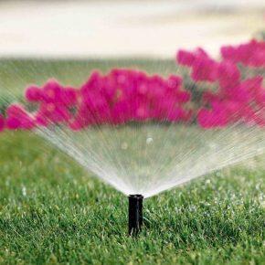 Про использование товаров для сада и огорода