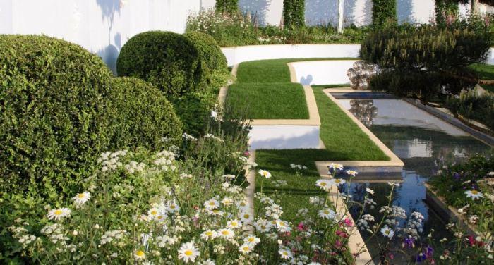 Как правильно стричь и обрезать растения: советы начинающим